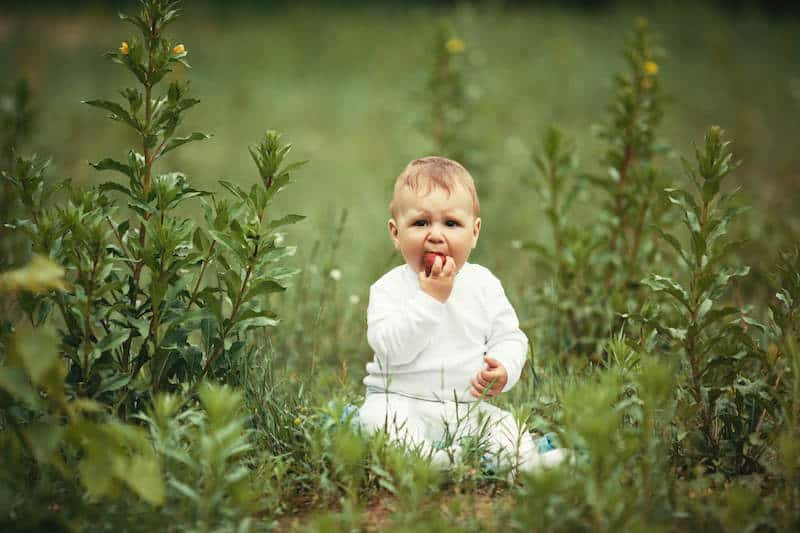 baby eating fruit in nature