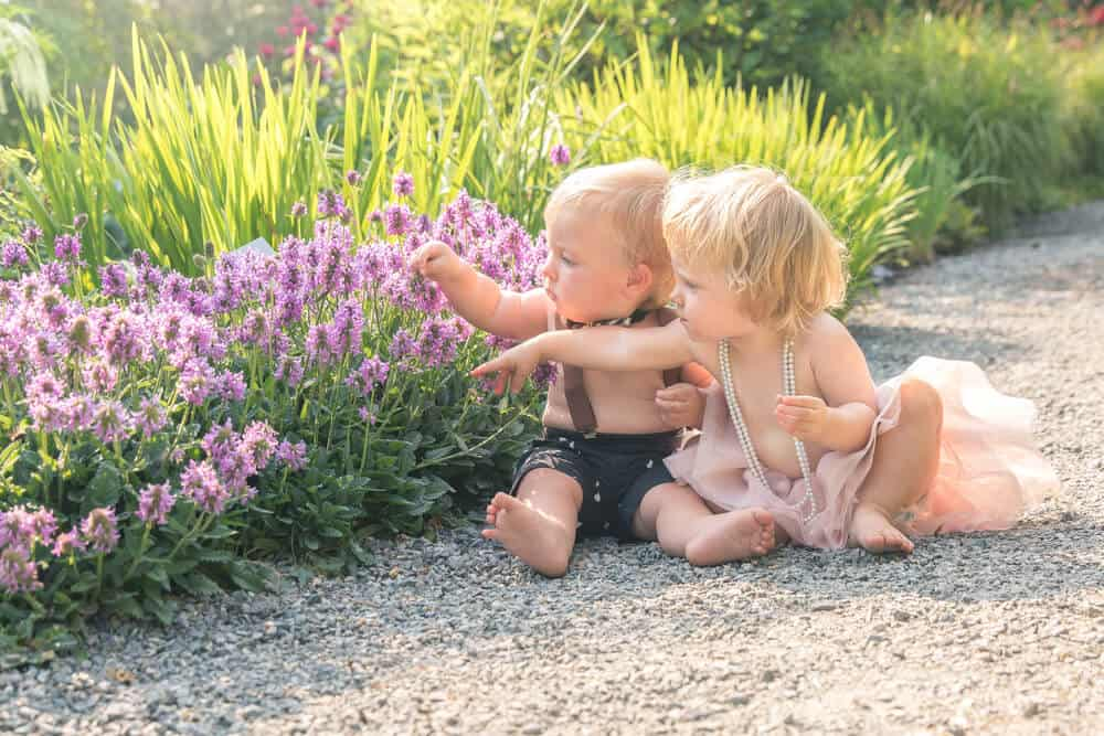 two babies with purple flowers