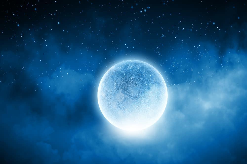 ayla moonlight