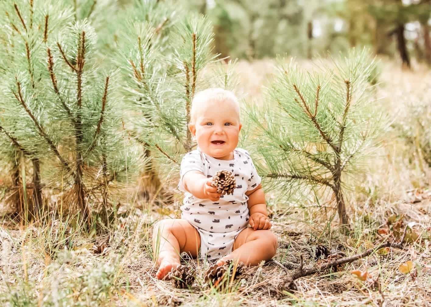 baby boy in green pine forest