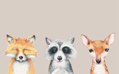 Top 10 Woodland Animal Crib Sheets